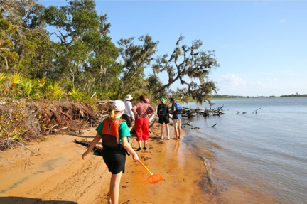 Family friendly beachcombing tours are a fun addition to your holiday. St Augustine Eco Tours