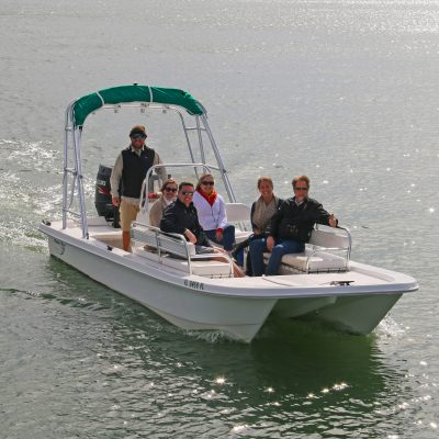 Dolphin tours and nature tours are a blast with St. Augustine Eco Tours